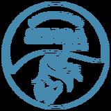 Professional Logo Design service icon