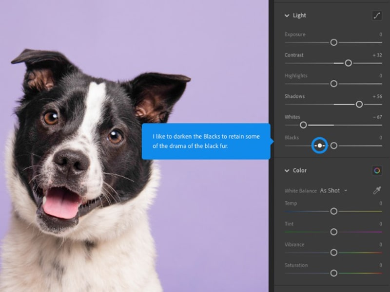 Best Raw image editing software For Beginners